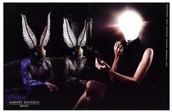 moth.1.jpg